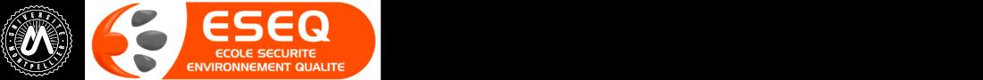 Sécurité, Environnement et Qualité Logo